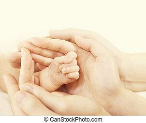 proteger, familia , manos, niño, padre, mano, recién nacido, nacido, padres, madre, bebé, nuevo, asimiento, niño