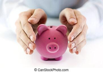 proteger, su, dinero