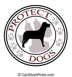 proteggere, cani