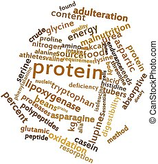 Protein - Abstract word cloud for Protein with related tags...