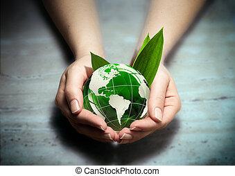 proteja, a, verde, de, américa