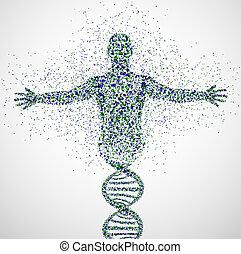 Prototype of man - Abstract model of man of DNA molecule. ...
