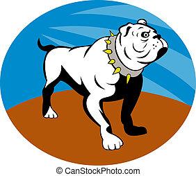 Proud English bulldog set inside an oval.