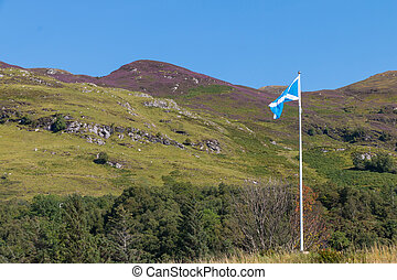 Proud Scottish flag flapping in the wind