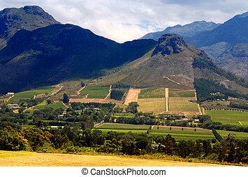 província, paisagem, capetown, africa), (south, rural