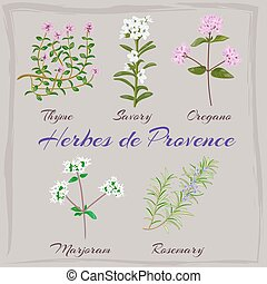 provence., de, herbes