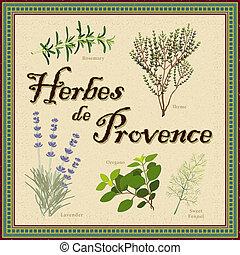 provence, de, mélange, herbes, francais