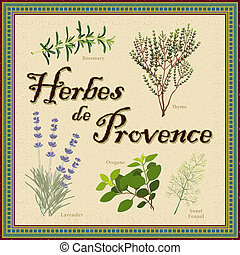 provence, de, mengen, herbes, franse