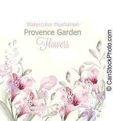 Provence flowers garden Vector watercolor. Lavender card delicate pastelate colors