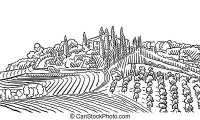 Provence Landscape Apple Plant and Vineyard