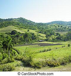 province, holguin, paysage, cuba