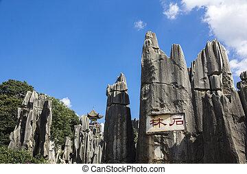 provincia, piedra, parque nacional, yunnan, bosque