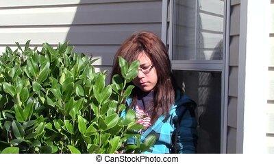 Pruning Bushes