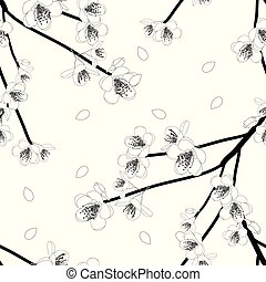 Prunus persica Outline - Peach Flower Blossom on White...