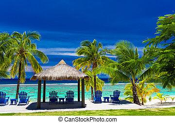 przód, dłoń drzewa, krzesła, wyspa, plaża, błękitny