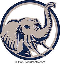 przód, głowa, retro, słoń