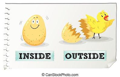 przeciwległy, adjectives, wnętrze, i, zewnątrz