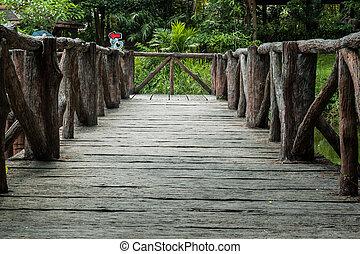przedimek określony przed rzeczownikami, tropikalny, rzeka