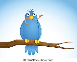 przedimek określony przed rzeczownikami, wcześnie, bird....