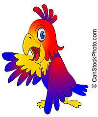 przekonuje, zabawny, papuga