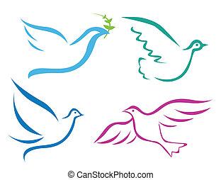 przelotny, ilustracja, gołębica, wektor
