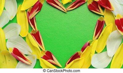 przelotny, serce, kwiat, mający kształt, płatki