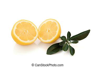 przepoławia, cytryna