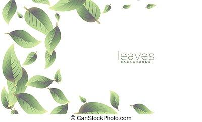 przestrzeń, zielone tło, liście, spadanie, tekst