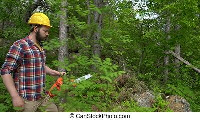 przez, chainsaw, drewna, pracownik, idzie