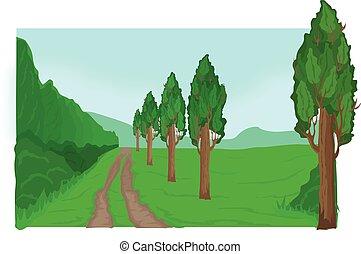 przez, las, droga