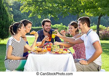 przyjaciele, cieszący się, piknik, odprężając