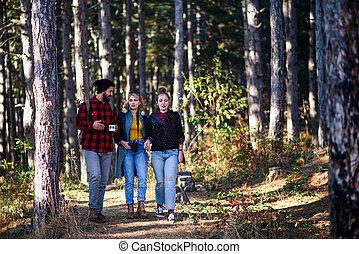 przyjaciele, grupa, podróż, hiking