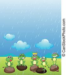 przyjaciele, książę, żaba