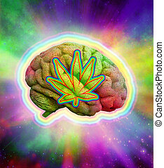psychedelic, 脳, マリファナ