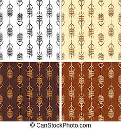 pszenica, seamless, zbiór, wzory, wektor, wielostrzałowy
