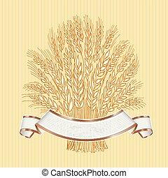 pszeniczny snop, ręka, elegancki, beżowe tło, pociągnięty, biały, chorągiew