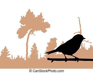 ptáček, filiálka, silueta