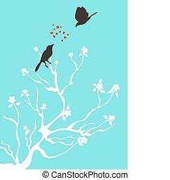 ptáci, hovor, láska