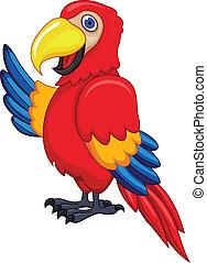 ptak, papuga
