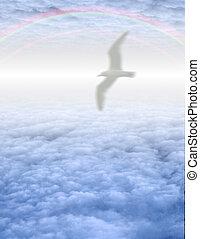 ptak, w, jasny, chmura