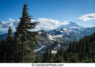 Ptarmigan Ridge on slopes of snowcapped Mount Baker, ...