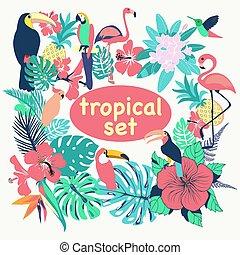 ptaszki, liście, zbiór, tropikalny, dłoń, kwiaty