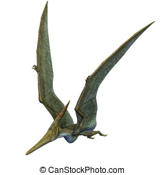 Pteranodon Dinosaur in flight wings up. From the Late...