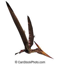 Pteranodon on White - Pteranodon was a reptilian bird from...