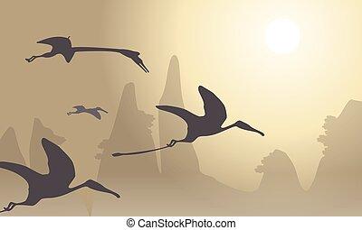 pterodactyl, beau, silhouette, paysage