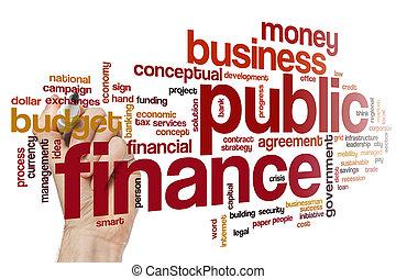 Public finance word cloud
