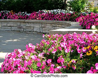 Public Flower Garden - A public flower garden with pink...