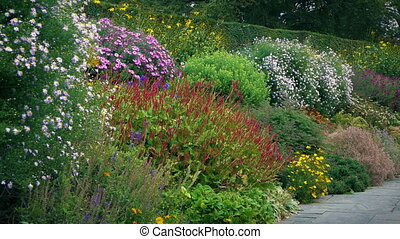 Public Gardens In Bloom - Many pretty plants and flowers in...