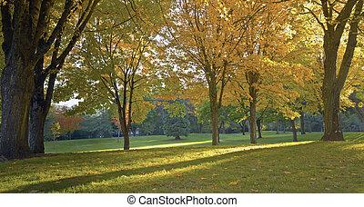Public park panorama in Autumn colors Gresham OR.