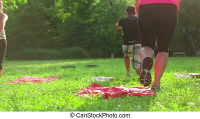 Public Park Workout - A group of people excercising in the...